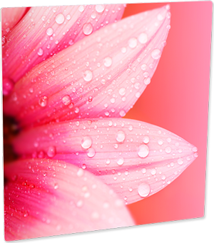 HD Aluminum Semi-Gloss White Photo Panels