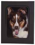 Midnight Panel Mount 5x7 - 100/box