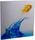 """ChromaLuxe 11.75"""" x 11.75"""" Gloss Clear HD Aluminum Photo Panel Case of 10"""