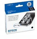 Epson R2400 Photo Black Ink (T059120)