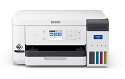 Epson SureColor F170 Sublimation Printer (C11CJ80201)